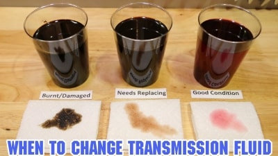 Transmission Fluid Change Cost and Interval
